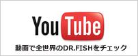 動画で全世界のDR.FISHをチェック