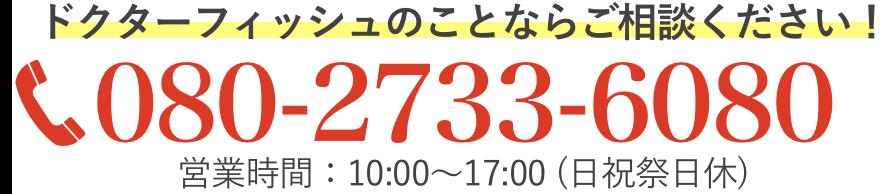 080-2733-6080 営業時間:午前10時から午後17時まで/月曜~土曜日(日祝日休)